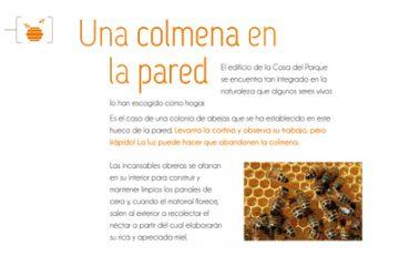 riolobos_11.7_COLMENA_forex